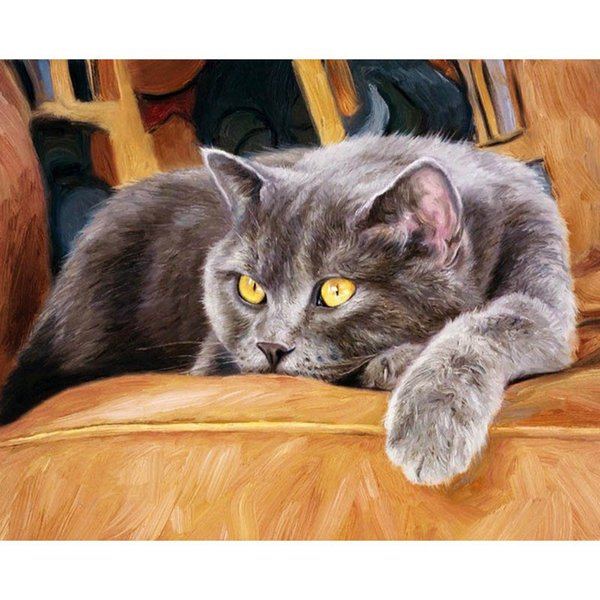 Cats picture diy oil painting by number instruction art can paint by anyone high quality plastic cases respect color 40*50 cm scope nice