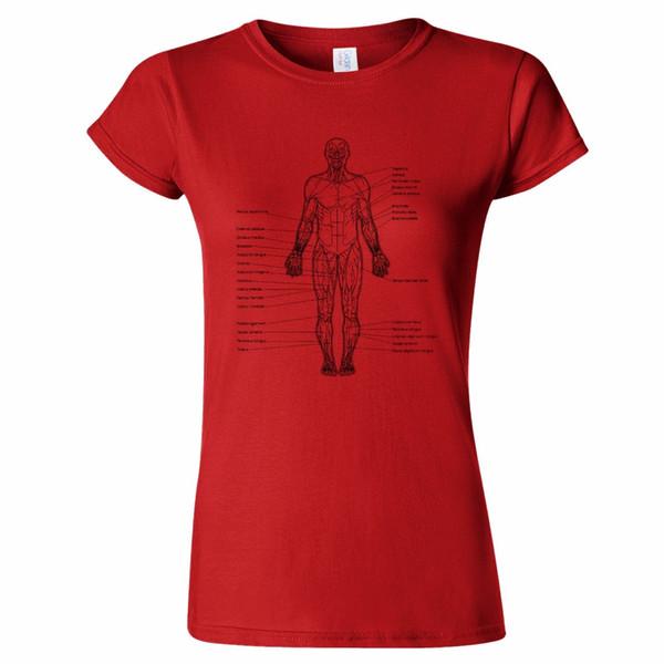 Großhandel Anterior Muskel Frauen T Shirt Menschlicher Körper ...