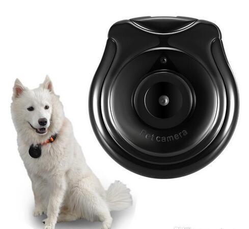 Kablosuz IP Kamera Pet Monitör için Pet Monitör Anti Kayıp Pet Monitör Hareket Algılama için Video Kayıt Köpek TV 1 ADET