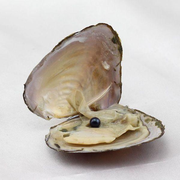 A mais recente cor misturada pérola pura natural de água doce ostra pérola Akoya DIY jóias talão fazendo e atacado pacote de correio