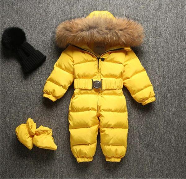 Amarillo (piel de perro mapache)
