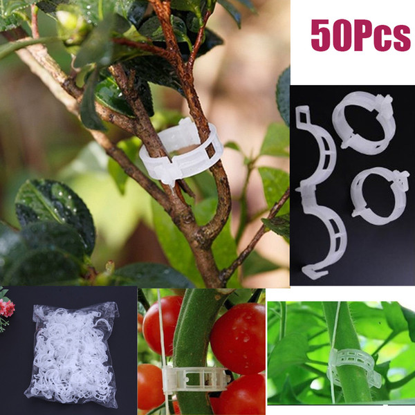 Langlang store Plant Clips Plastic Rattan Clips Hanging Clip Vine Fixed Clips Used For Gardens And Flowers To Keep Plant Stems Straight 50pc