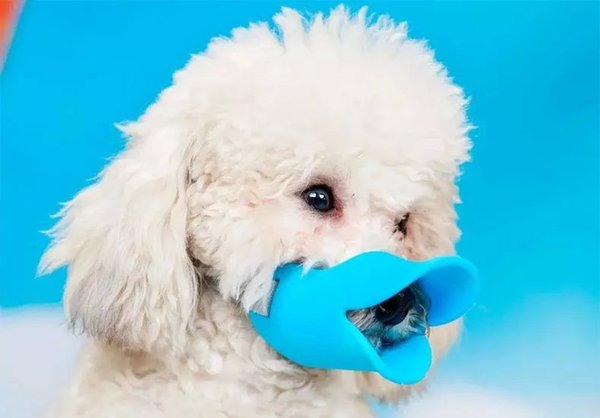 Adjustable Dog Muzzle Pets Anti Bite Masks No Barking Pets Muzzle Duckbill Mouth for Small Medium Dog Pet Products