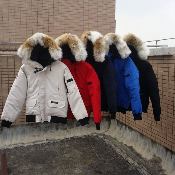 b207fe74d44 18AW European And American Down Jacket Short Outdoor Wolf Hair Big Goose  Down Jacket Men And