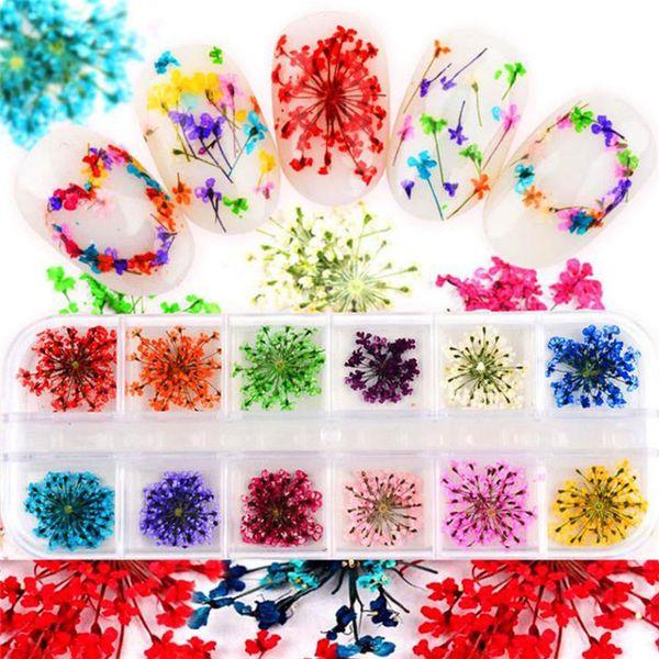 Tırnak Sanat Malzemesi Rhinestones Glitter 3d Tırnak Takılar Çiviler Kurutulmuş Çiçekler Sticker Telefonu Ayna Lehçe Dekorasyon Sticker