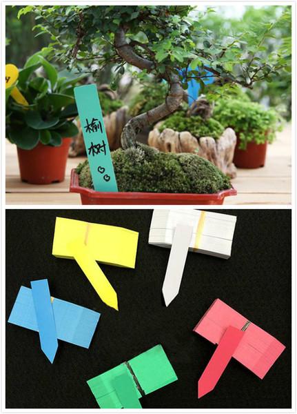 Dışında Kreş Çevre Renkli 100 Adet / grup Plastik Bitki Etik Bahçe Ekleme Sitesi Etiket Çiçek Etli Süsleme Etiketleri