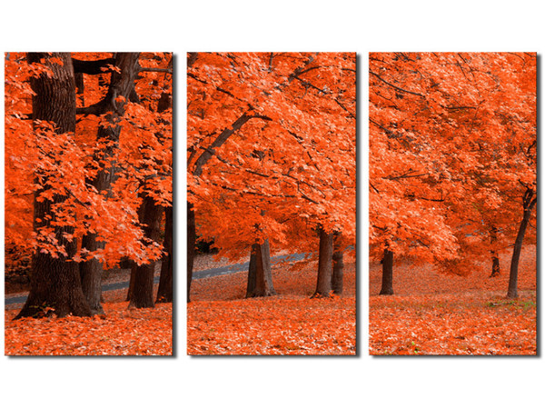 Orange color Maple tree Leave Modern Wall Art Living Room Decor Unframed 3 Piece Hd Picture Canvas Print Painting