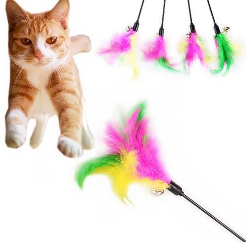 Pet Cat Teaser Fantaisie Multicolore Plume Jouets Chat Baguette Cat Catcher Teaser Bâtons jouets de formation interactifs en gros noDC26