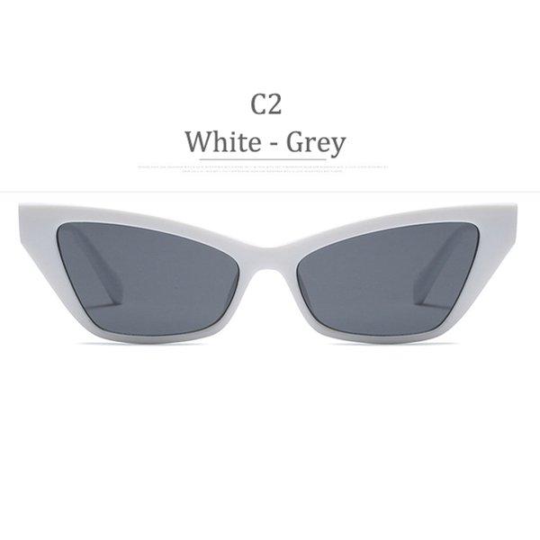 C2 Lenti grigio telaio bianco
