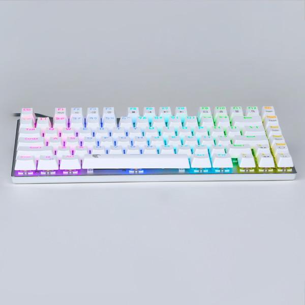 z88 Kleine mechanische Tastatur Tenkeyless RGB-LED-Hintergrundbeleuchtung Blauer Schalter Kompaktes Erogonomisches Design Tastatur 81 Tasten US Layout
