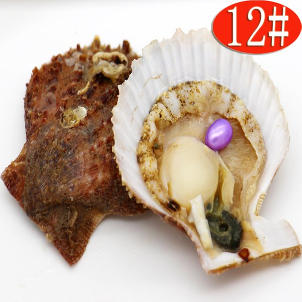 Brine red shell oyster and freshwater pearl 6-8mm AAA grade (without thread) Ellipse #12 light purple pearl vacuum packaging