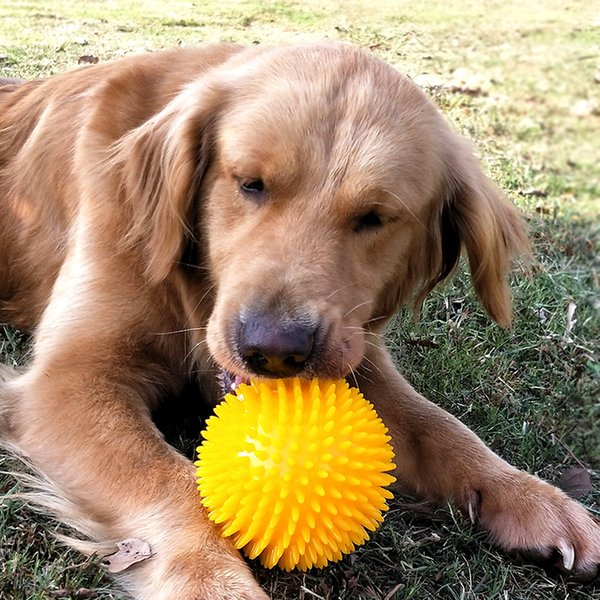 Thorn ball cleaning teeth pet toy Molar green blue yellow orange red toy ball Golden Retriever dog love biting magic ball.DC-459