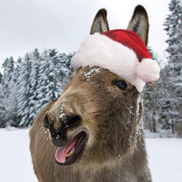 Satın Al 24x24 Cm Noel Eşek Elmas Boyama Ile Tam Kare Noel çiftlik