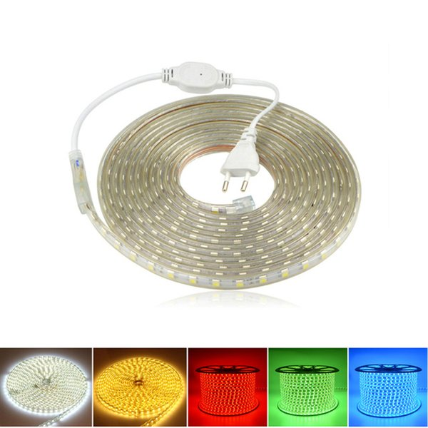 110V 220V 100m LED Strip Light Tape 5050 Impermeabile Led Strisce di Luce Vacanza Natale Decor illuminazione String con potenza Suply