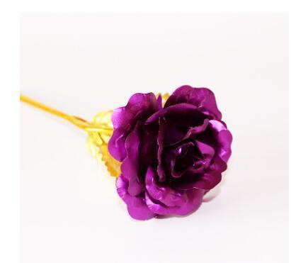 violet + BOX