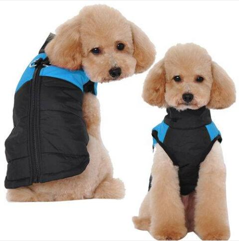 2019 Бесплатная доставка Оптовая водонепроницаемый Зимняя собака куртка Pet одежда щенок дождь пальто теплый щенок костюм