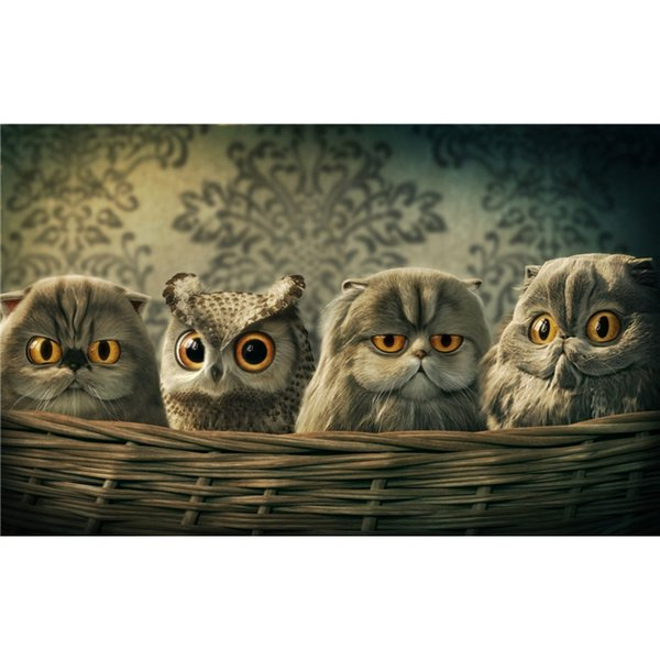 Full square diamond embroidery cat 3D photo full rhinestone 5D DIY diamond painting owl cross stitch gift party home decoration