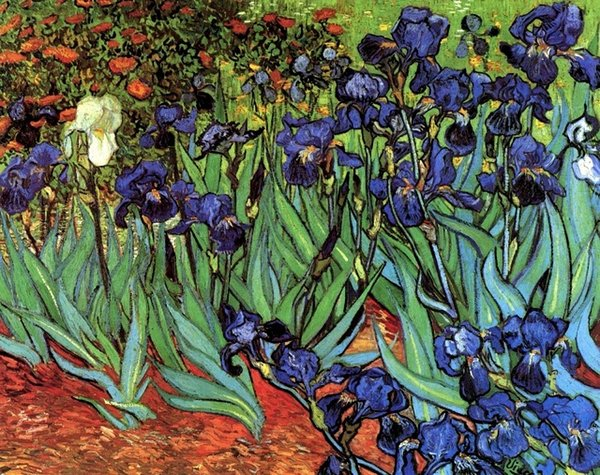 Irises by Vincent Van Gogh Free Shipping,Hand-painted Landscape Art oil painting On Canvas Wall Art Home Decor Multi sizes l138