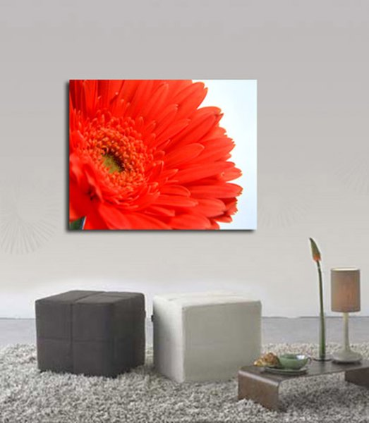 Photography-I9-Unframed Modern Canvas Wall Art for Home and Office Decoration,Painting ,Animal paintings ,Frame painting