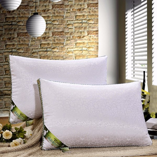 top popular 100% Mulberry silk filling pillow 48x74cm Eco- Friendly pure natural silk 2019
