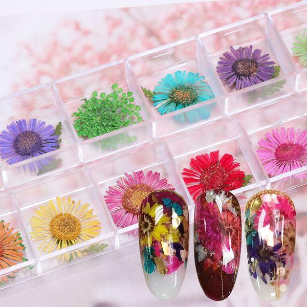 12 Designs 3D Daisy Nail Dry Flower Petal Natural Floral Leaves Nail Art Decoration DIY Sticker Tips Manicure Tools Set SAFL677
