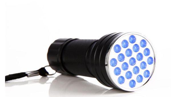 New Mini Portable UV Ultra Violet Purple 21 LED Flashlight Blacklight High Brightes Torch Lamp Light 395nm