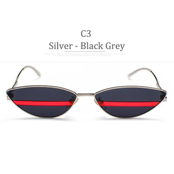C3 Silver Frame Black Grey Lens