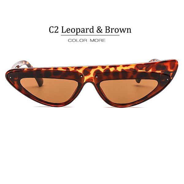 C2 Leopard Frame Brown Lens