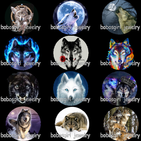 5pcs/set wolf wolves glass Snap button Charm Popper for Snap Jewelry picture pendant GS9970
