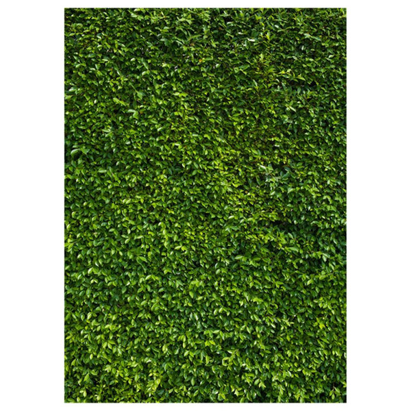 top popular 5x7ft(150x210cm) Nature Green Grass Backdrops Photography Wedding or Children Birthday Background 2019