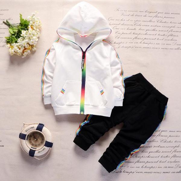 2018 Sonbahar Toddler Eşofman Bebek Giyim Setleri Çocuk Erkek Kız Elbise Çocuklar Pamuk Kapşonlu Zip Ceket Pantolon 2 Adet Suits