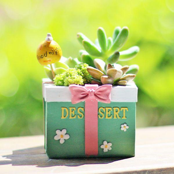 Creative Succulents Flowerpot Cartoon Gifts Box Kawaii Zakka Mini Plam Succulents Planter Flower Pot Garden Home Decoration
