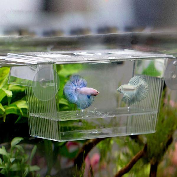 Aquarium Transparent Double Bol Combats Poisson Mini Maison Incubateur Boîte Pour Frire Isolement Écloserie Reptile Cage Tortue Maison