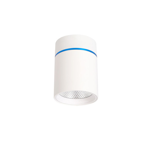 Cylindrique LED COB Downlight 12 Watt ronde Plafonnier spot AC 85-265V Salon Chambre Aisle Lumière Zhongshan