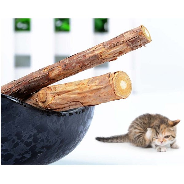 Cat Toys New Catnip Silvervine teeth Sticks Cats Dental Health Sticks Pets Catnip Products wooden toys cats snacks cats favor newest