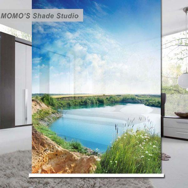 MOMO Thermal Black Blackout Fabric Custom Blue Window Cortinas Roller Shades Persianas, Alice 41-44