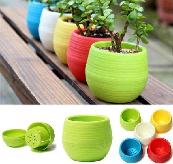 5 Colourful Mini Plastic Flower Pot 7*7cm Succulent Plant Flowerpot Home Garden Office Decor Succulent Plant EEA350 200PCS