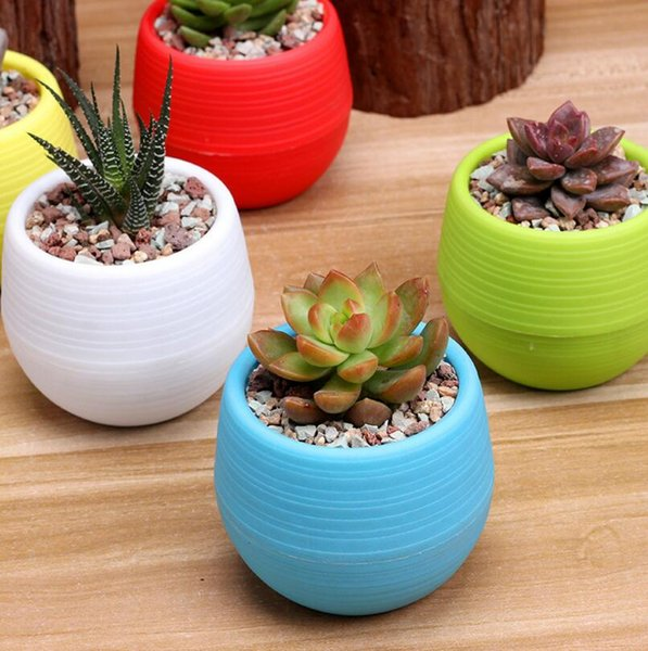 5 Colourful Mini Plastic Flower Pot 7*7cm Succulent Plant FlowerPot For Home Garden Office Succulent Plant Decor LX3485