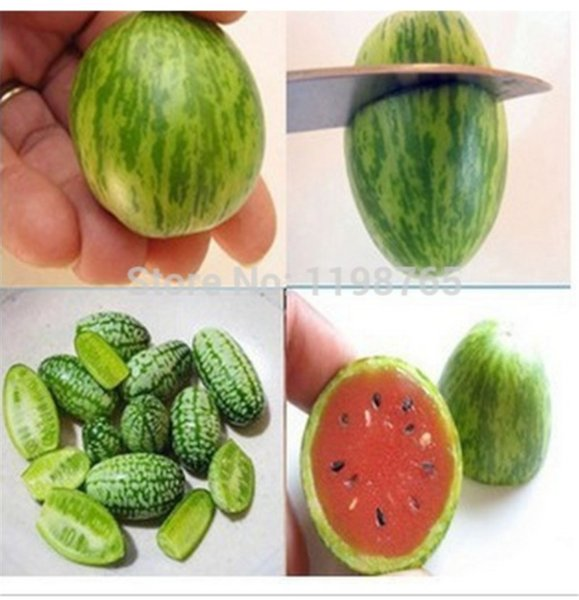 30 pcs/bag rare mini thumbs small balcony pot planting watermelon seeds red-yellow-green mixed cool sweet healthy melon seeds eco friendly
