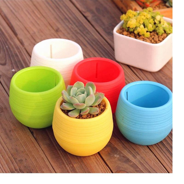 Mini Round Plastic Meat Plant Flower Pot Garden Home Office Decor Micro Landscape Planter High Quality c537