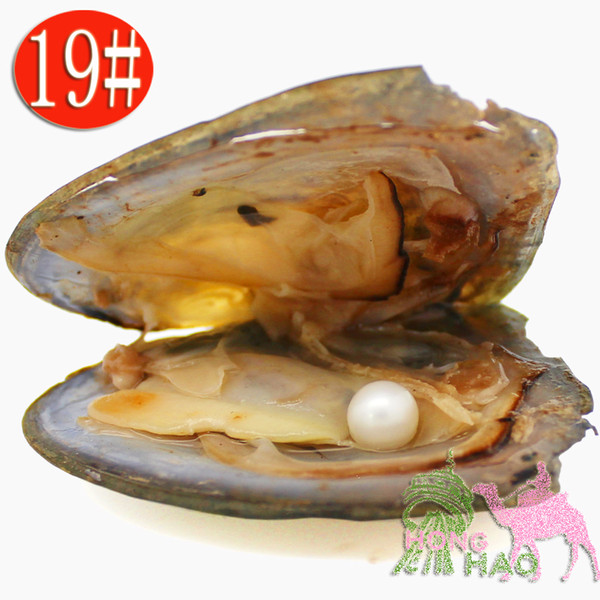 Wholesale AAAA6-7mm vacuum packed freshwater pearl oyster, pearl color is 19# natural white(free shipping by DHL )