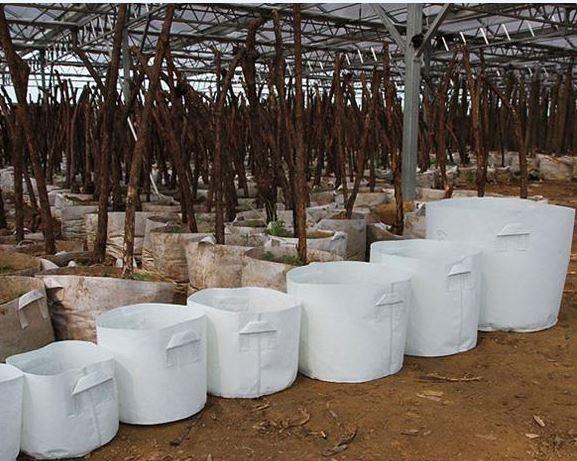 Sac de plantation de pots de culture hautement respirants, à face souple, réutilisable, non tissé, avec des poignées Grand planteur de fleurs