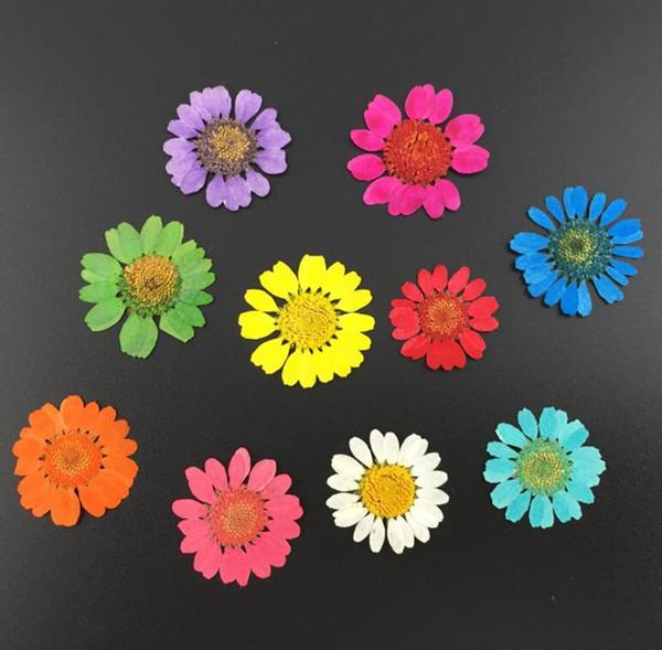 Dekoratif Kurutulmuş Çiçekler Aromaterapi Balmumu Dekorasyon Oldukça Büyüleyici Dekoratif Çiçekler Düğün Kurutulmuş Çiçek Dekoratif Çiçek Çelenkleri