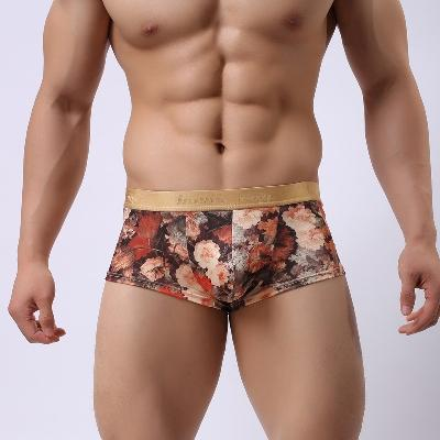 Mercendes khani hot and nude