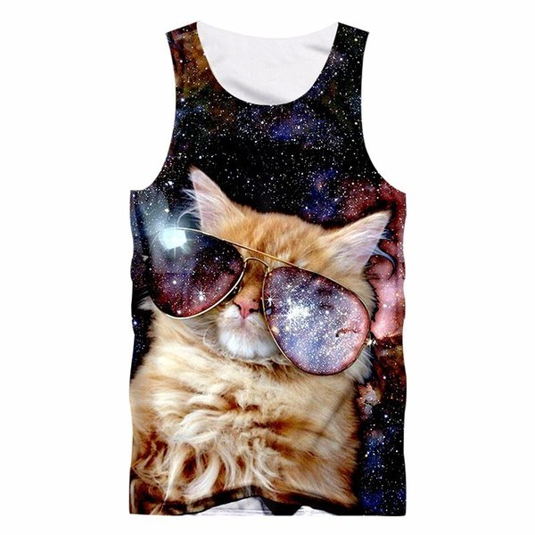 Galaxay Space CatGal