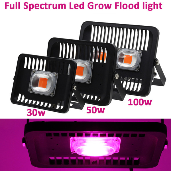 Full Led Grow Flood light Outdoor IP65 Waterproof High Power 30W 50W 100W 220V For Plant With EU Plug Connector