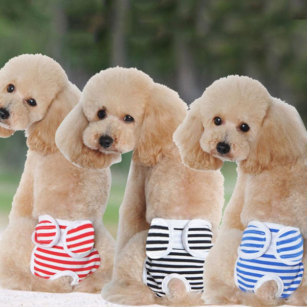 New Small Female Cute Pet Dog Panty Sanitary Pants Underwear Cute Hygienic Pant Short Cotton Pet Physiological Panties Briefs
