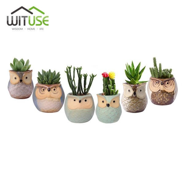 Wituse 6x Cute Owl Face Ceramic Flower Pots Small Glazed Plant Pot For Succulents Planter Garden Home Decors Herb Vases
