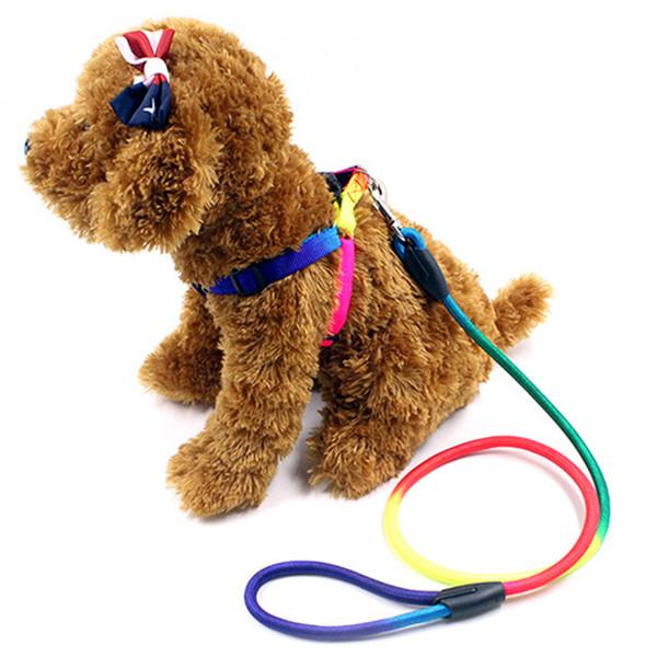 Nylon arcobaleno da 120 cm Pet Dog Guinzagli Traction Rope Dog Walking Harness Cagnolino Training Belt Dog Walking Leads