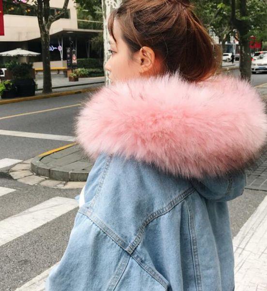 Pink Fur Collar